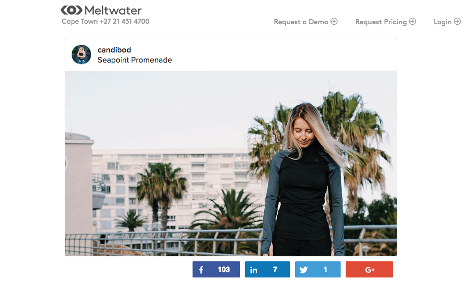 MELTWATER WRITE UP